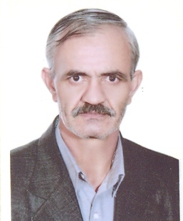 Mojtaba Habibi